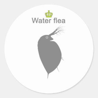 water flea g5 classic round sticker