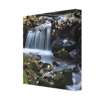 Water flow canvas print