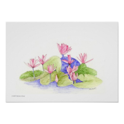 Water Flowers Poster