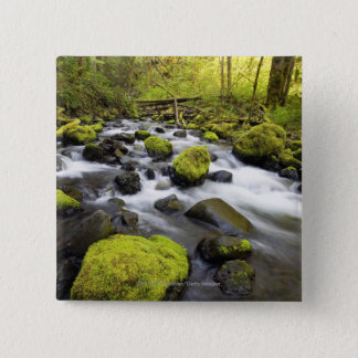 Water Flowing By Moss Covered Rocks In A Stream Button