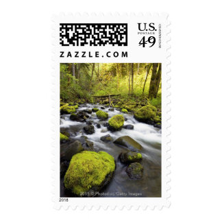 Water Flowing By Moss Covered Rocks In A Stream Stamps