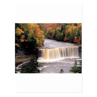 Water for Autmn Postcard