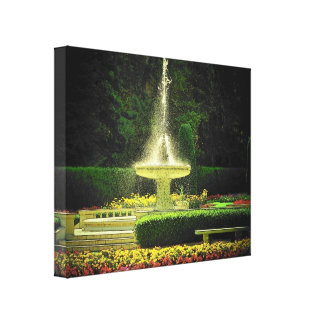 Water Fountain in the Park by DJONeill Canvas Print