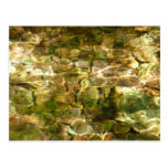 Water from Hot Springs Abstract Nature Photo Postcard