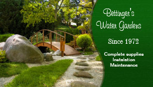 Water Garden And Landscaping Business Card