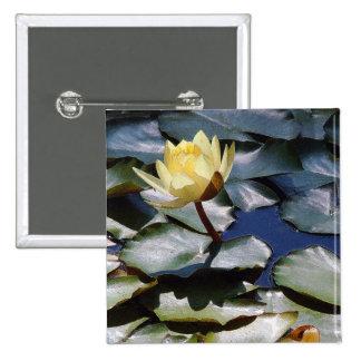 Water Garden Pond Waterlily Lilypad Flowers Floral Pinback Button