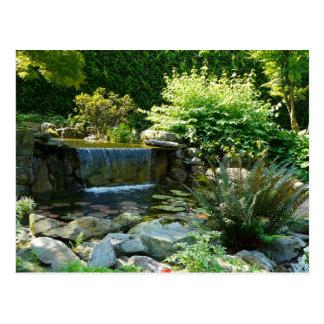 Water Garden Postcard