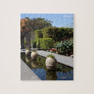 water garden jigsaw puzzle