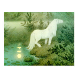 Water Horse Kelpie Artwork Postcard