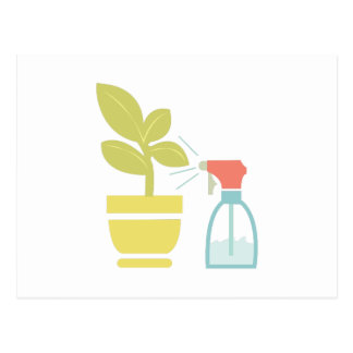 Water House Plant Postcard