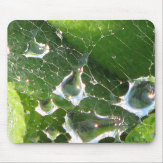 Water in a spider web mouse pad