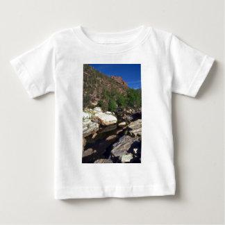 Water In Desert Valley Shirt