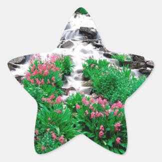 Water Indian Peaks Wilderness Roosevelt Star Sticker