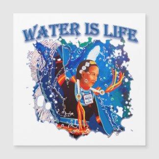 Water is Life - Fancy Shawl Dancer