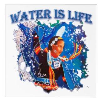 Water is Life - Fancy Shawl Dancer Acrylic Print