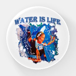 Water is Life - Fancy Shawl Dancer Paperweight