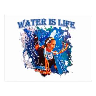 Water is Life - Fancy Shawl Dancer Postcard