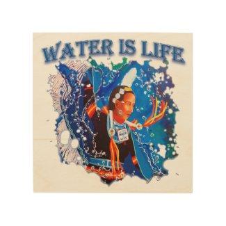 Water is Life - Fancy Shawl Dancer Wood Wall Art