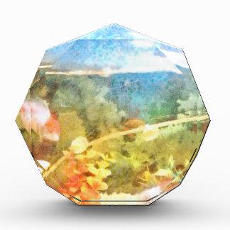 Water level in an aquarium acrylic award