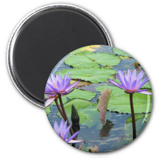 Water Lilies 2 Inch Round Magnet