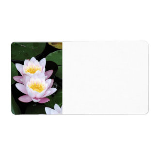 Water Lilies Address Labels