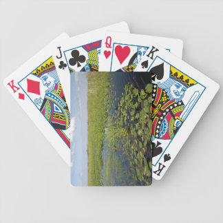 Water lilies and sawgrass in Florida everglades 2 Bicycle Playing Cards