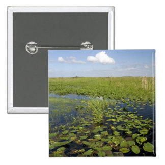 Water lilies and sawgrass in Florida everglades 2 2 Inch Square Button