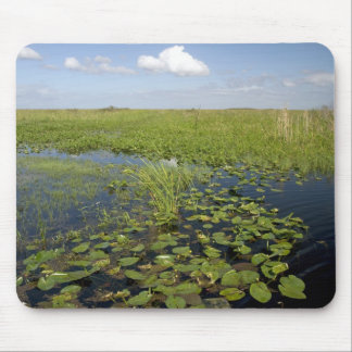 Water lilies and sawgrass in Florida everglades 2 Mousepads