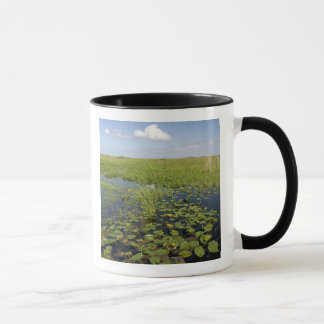 Water lilies and sawgrass in Florida everglades 2 Mug