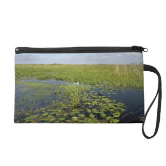 Water lilies and sawgrass in Florida everglades 2 Wristlet