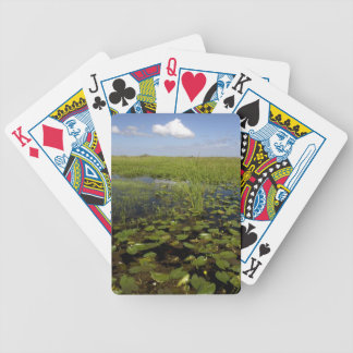 Water lilies and sawgrass in Florida everglades Bicycle Playing Cards