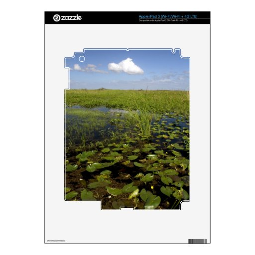 Water lilies and sawgrass in Florida everglades iPad 3 Decal