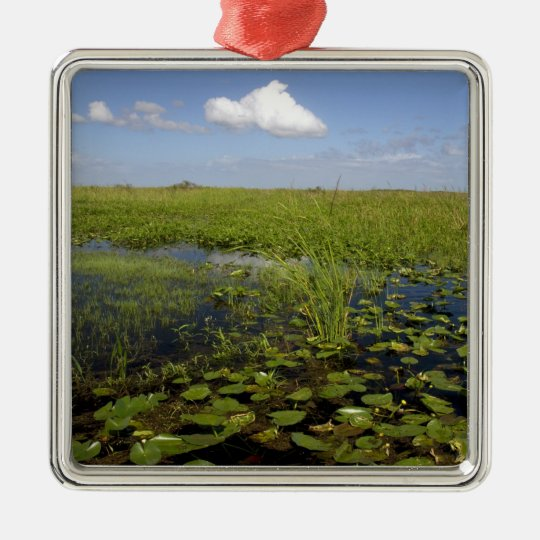 Water lilies and sawgrass in Florida everglades Metal Ornament