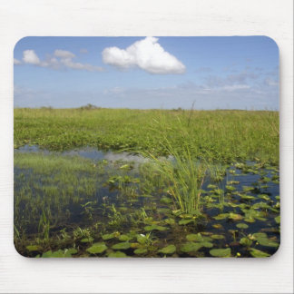 Water lilies and sawgrass in Florida everglades Mouse Pads