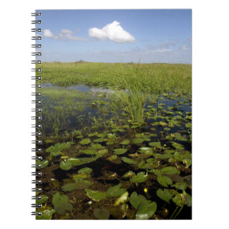 Water lilies and sawgrass in Florida everglades Note Book