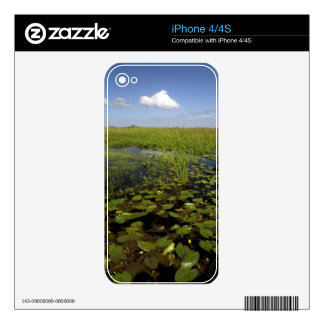 Water lilies and sawgrass in Florida everglades Decal For The iPhone 4S