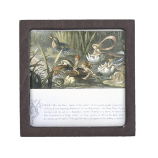 Water-Lilies and Water Fairies, illustration from Premium Gift Boxes