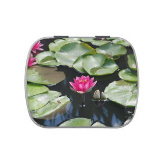 water lilies candy tins