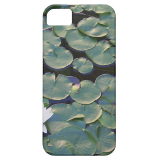 Water Lilies iPhone 5/5S Cases