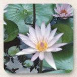 Water Lilies II Cork Coaster