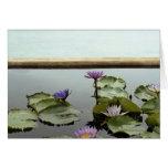Water lilies in pond by ocean card