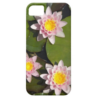 Water lilies iPhone SE/5/5s case