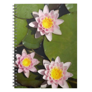Water lilies spiral note books