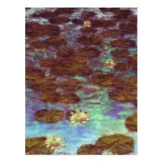 Water Lilies Postcard