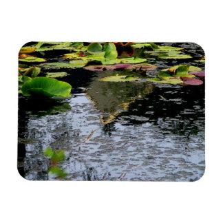 Water Lilies Rectangular Photo Magnet