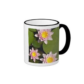Water lilies ringer coffee mug