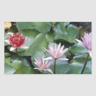 Water Lilies Sticker Rct