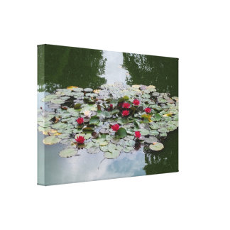 Water Lilies Stretched Canvas Print