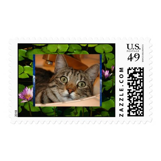 Water lilies, Winter, Annie in the Sink Postage