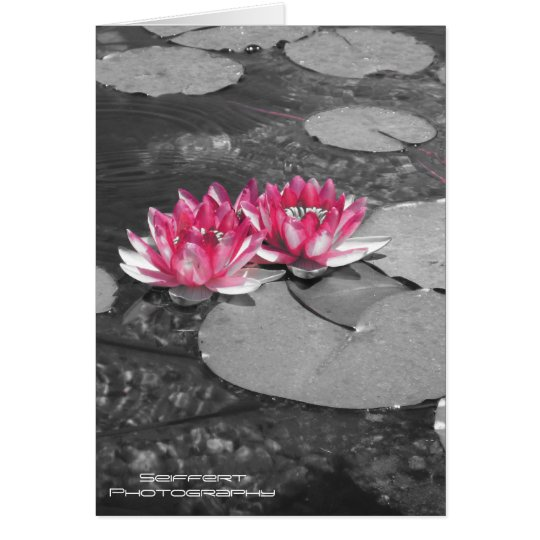 water lillies card